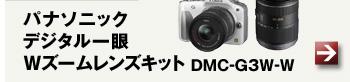 パナソニック デジタル一眼Wズームレンズキット DMC-G3W-W