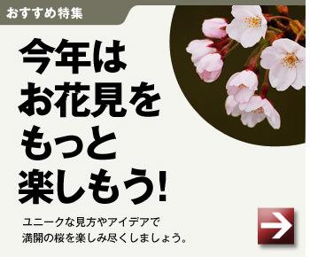 [おすすめ特集]今年はお花見をもっと楽しもう!