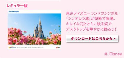 レギュラー版 東京ディズニーランドのシンボル「シンデレラ城」が壁紙で登場。キレイな花とともに映る姿でデスクトップを華やかに飾ろう! ダウンロードはこちらから
