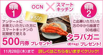 「OCN×スマートキッチン」必ず貰えるキャンペーン第3弾!<応募期間>2013年11月28日(木)まで