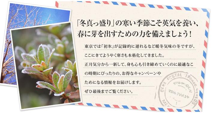 「冬真っ盛り」の寒い季節こそ英気を養い、春に芽を出すための力を備えましょう!