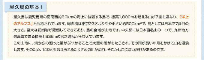 屋久島の基本!