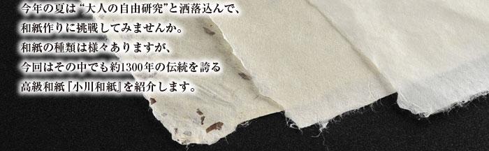 """今年の夏は""""大人の自由研究""""と洒落込んで、 和紙作りに挑戦してみませんか。 和紙の種類は様々ありますが、 今回はその中でも約1300年の伝統を誇る 高級和紙『小川和紙』を紹介します。"""